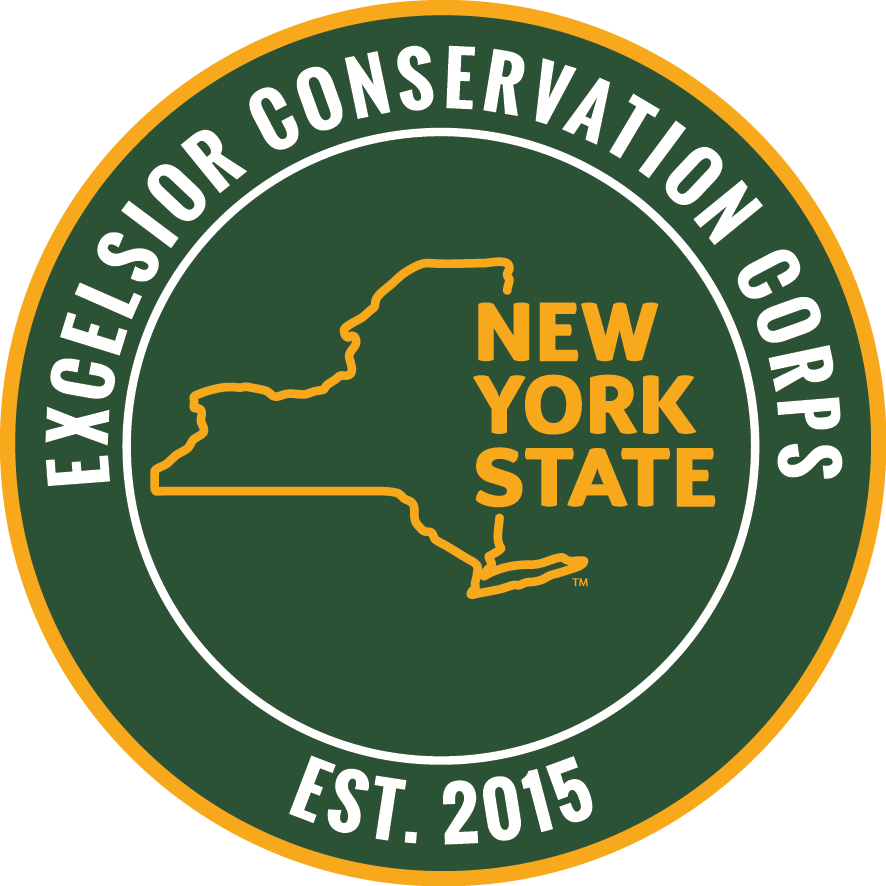 SCA Excelsior Conservation Corps Member
