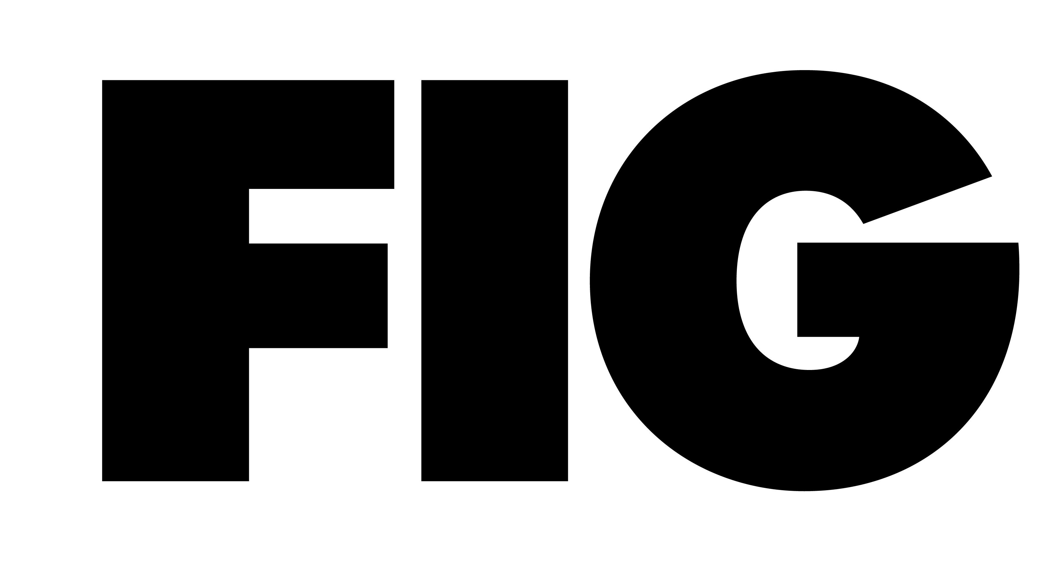 FIG Agency Logo