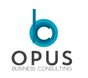 Business Consulting Assistant